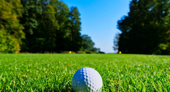 White golf ball on green grass with trees in the background
